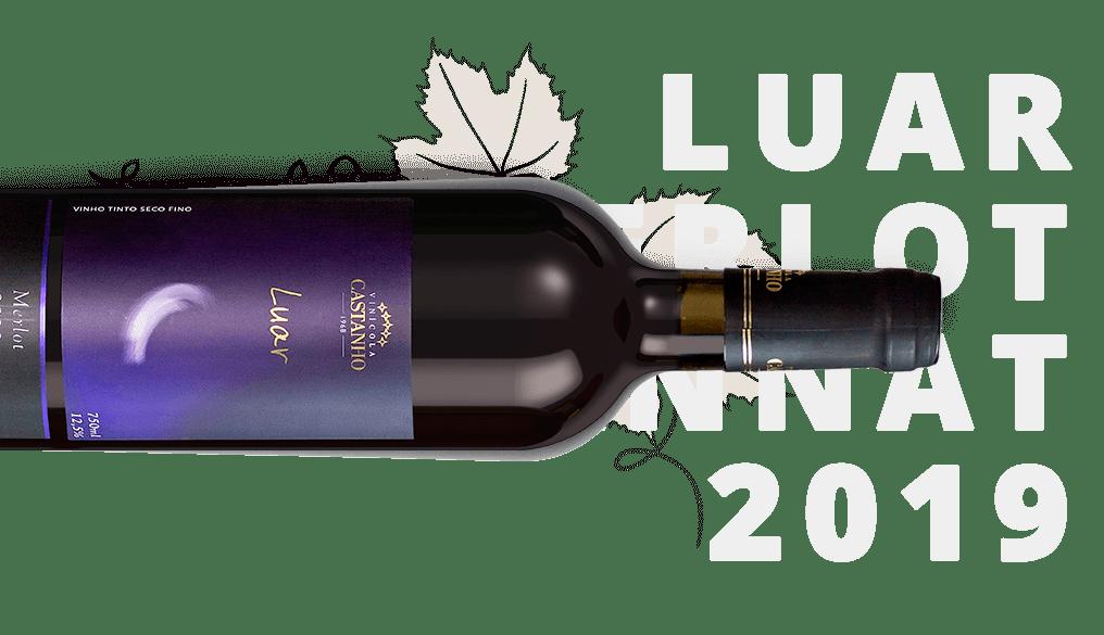 Vinho Luar Merlot 2020